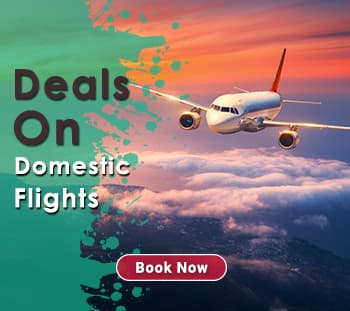 Flight Deals Domestic