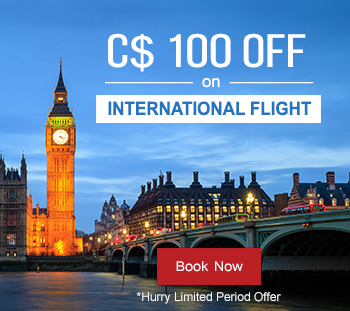 Flight Deals International