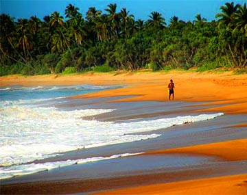 Sri Lanka Honeymoon Package