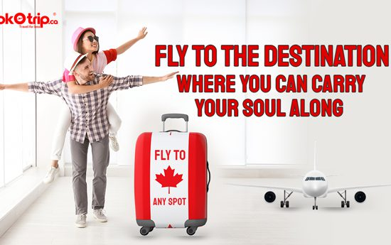 cheap tickets canada to fly anywhere